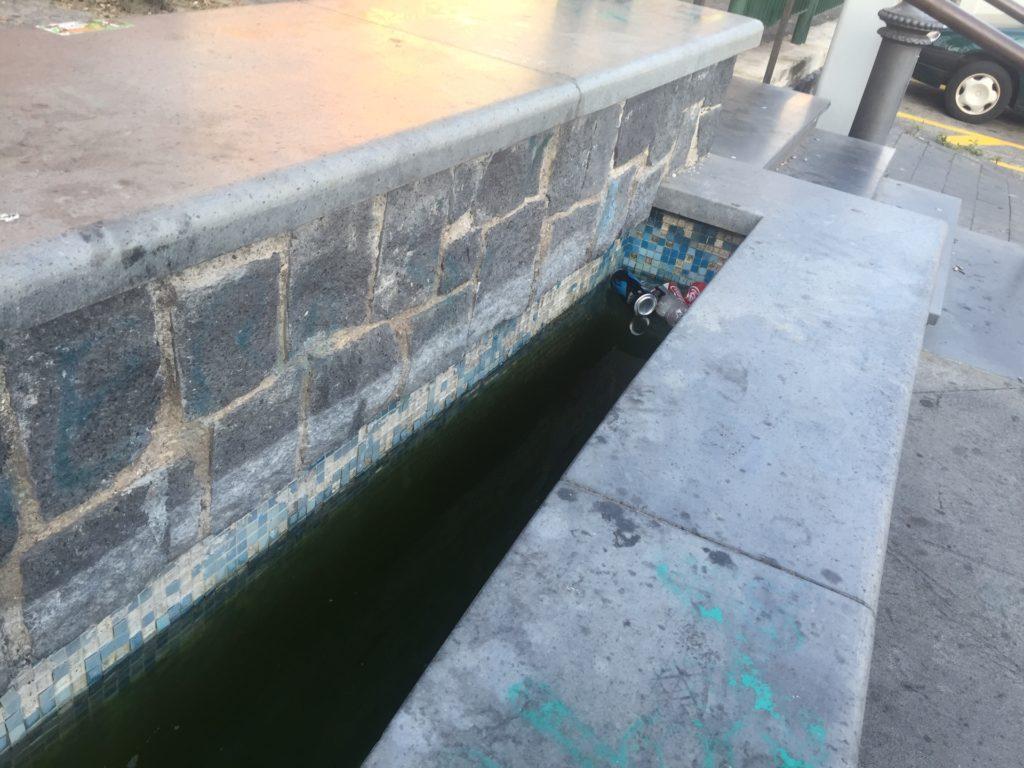 fontana bottazzi (2)